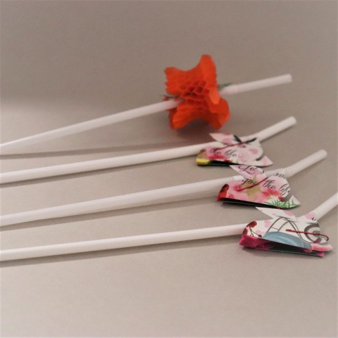 COCKTAIL FRUIT STRAW PACK OF 6PCS